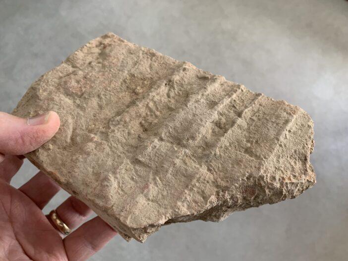 C10 Brick Fragments from Bukhara, Uzbekistan